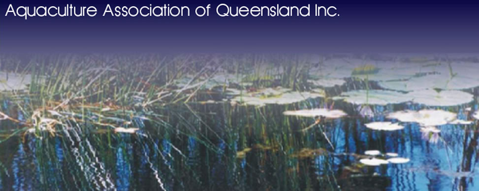 Aquaculture Association of Queensland